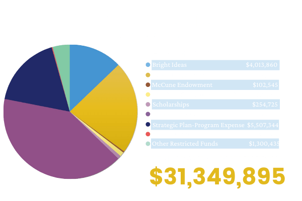 FINANCE OVERVIEW GRAPHIC (2)